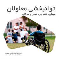 توانبخشی-معلولان-بینایی-شنوایی-حسی-و-حرکتی